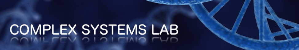 Complex Systems Lab